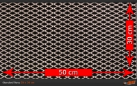 Race Mesh 44x8, in 50x30 cm, RAL-Wunschfarbe