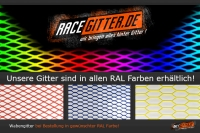 Race Mesh 44x8, in 150x50 cm, RAL-Wunschfarbe